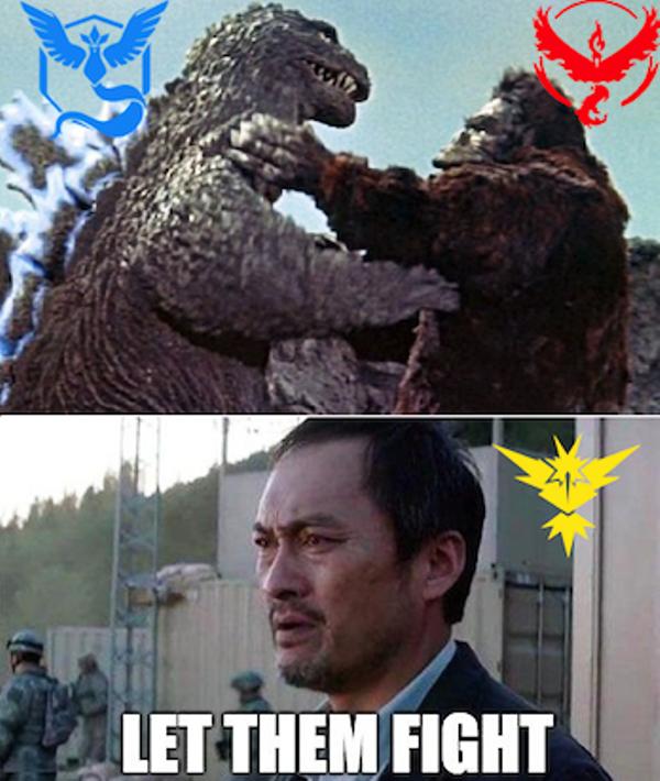 62 Best Pokemon Go Valor Memes